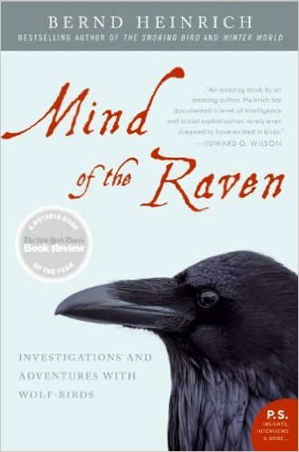 Mind_of_the_Raven